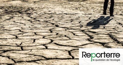 Maladies, canicules, famines… le changement climatique promet un désastre sanitaire