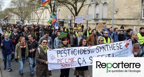 Le gouvernement s'obtine sur les pesticides, le Conseil d'État le sanctionne
