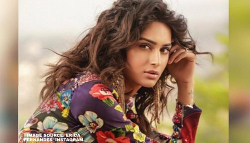When Erica Fernandes opened up about challenges in South film industry due to her weight