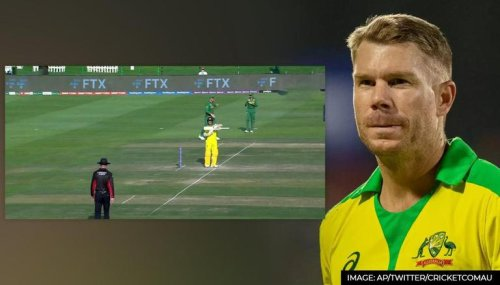 David Warner signaling umpire to review no-ball for height sends fans into frenzy; Watch