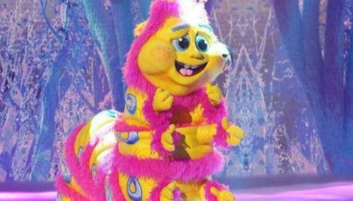 'The Masked Singer' Season 6: Who are Caterpillar, Cupcake, Mallard, Banana Split?