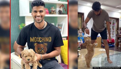 Washington Sundar makes 'Gabba' dance to his tunes after returning home from IPL | Watch