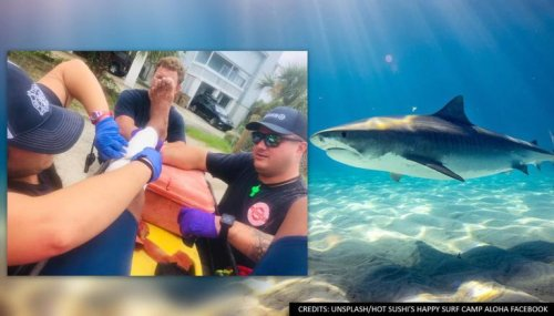 Surfing instructor who warned students on shark attacks gets bitten moments later by one