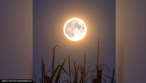 Harvest Moon: Here's how to watch and capture the full moon on September 21