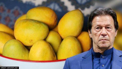 Pakistan sends mangoes to 32 nations under 'Mango diplomacy'; US, China reject souvenir