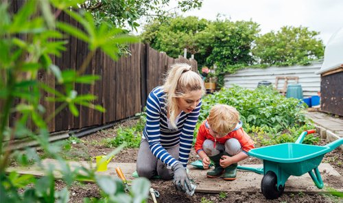 The 10 Best Cheap Gardening Tools for New Plant Parents The Real Deal by RetailMeNot