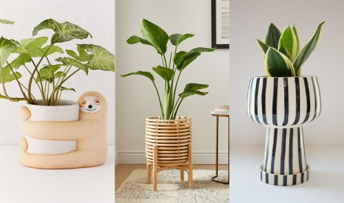 The 25 Best Plant Lady Items for the Garden of Your Dreams
