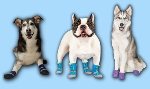 9 Best Dog Boots (and Does Your Dog Need Boots?) The Real Deal by RetailMeNot