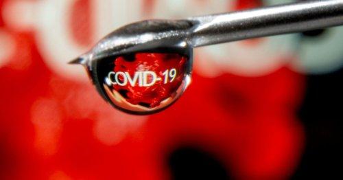 Explainer: COVID-19 vaccine patents dominate global trade talks