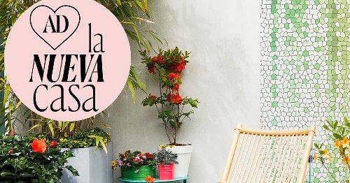 9 preciosas PLANTAS con flores para tu TERRAZA que lo resisten todo