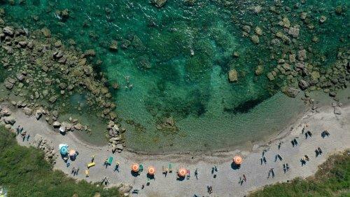 Battling to 'replant' Albania's threatened marine forests - RFI