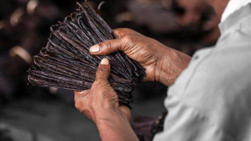 Reportage Afrique - Procès vanille aux États-Unis: quel impact pour la vanille malgache?