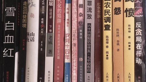 Pro-democracy books disappear from libraries as Hong Kong steps up censorship