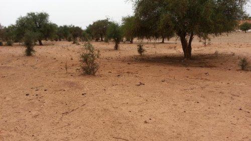 Niger: attaque d'un poste de police à la frontière du Burkina Faso