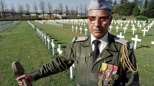 French president hosts Algeria's Harki fighters in step towards reparation