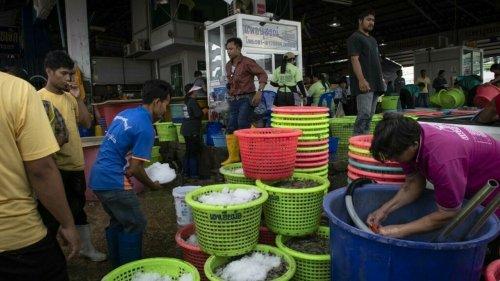 Fréquence Asie - Les mauvais traitements infligés aux travailleurs étrangers en hausse en Thaïlande