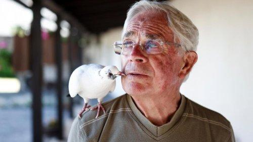 In France's wild west: an elderly man's best friend is his bird