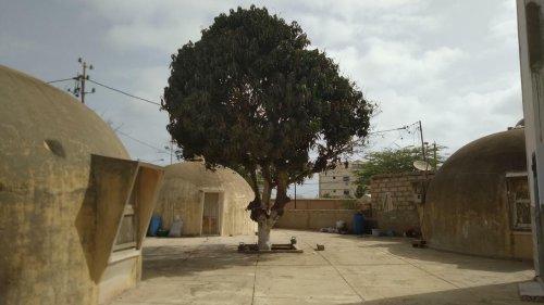 Reportage Afrique - Afritecture [2/5] Sénégal: les «maisons bulles» de Wallace Neff à Dakar en voie de disparition