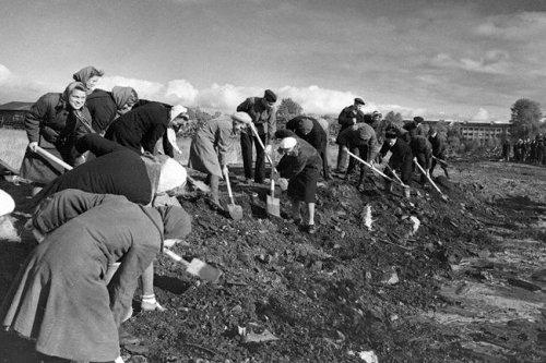Как жили горьковчане в годы Великой Отечественной войны