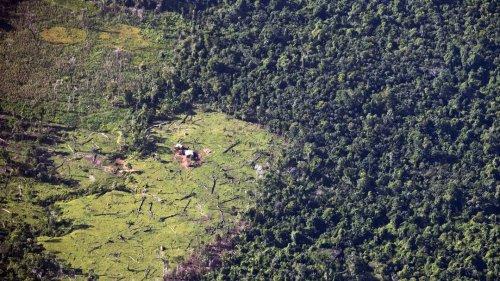 Massaker auf dem Kiwakumbaih: indigene Kinder, Frauen und Männer getötet