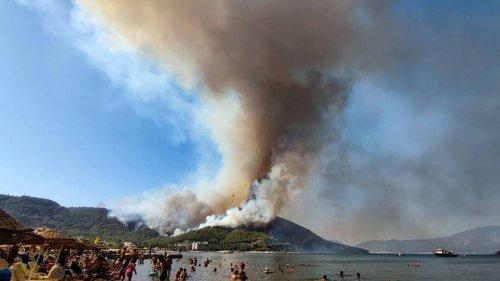 Waldbrände in der Türkei – Erdogan wirft Tee aus fahrendem Bus