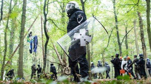 Rechtsstreit umHambacher Forst: Kerpen zieht Berufung zurück