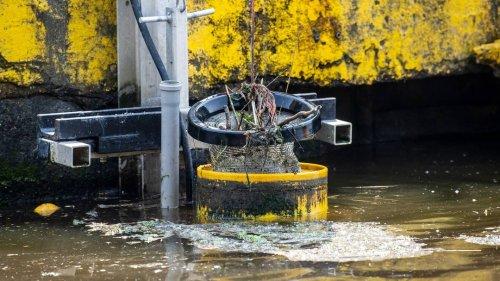 """""""Seabins"""": Immer mehr schwimmende Mülleimer befreien Häfen von Plastikmüll"""