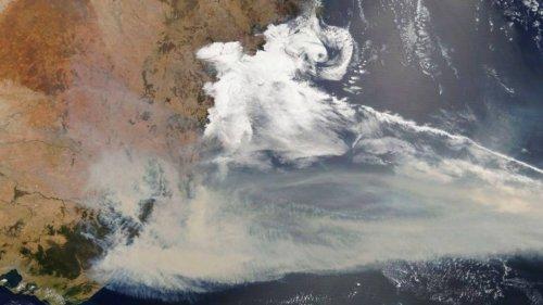 Studie: Australische Buschfeuer lösen gigantische Planktonblüte im Ozean aus