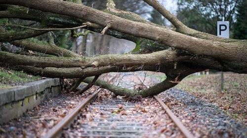 Klimawandel: Deutsche Bahn stellt sich auf extremere Wetterverhältnisse ein