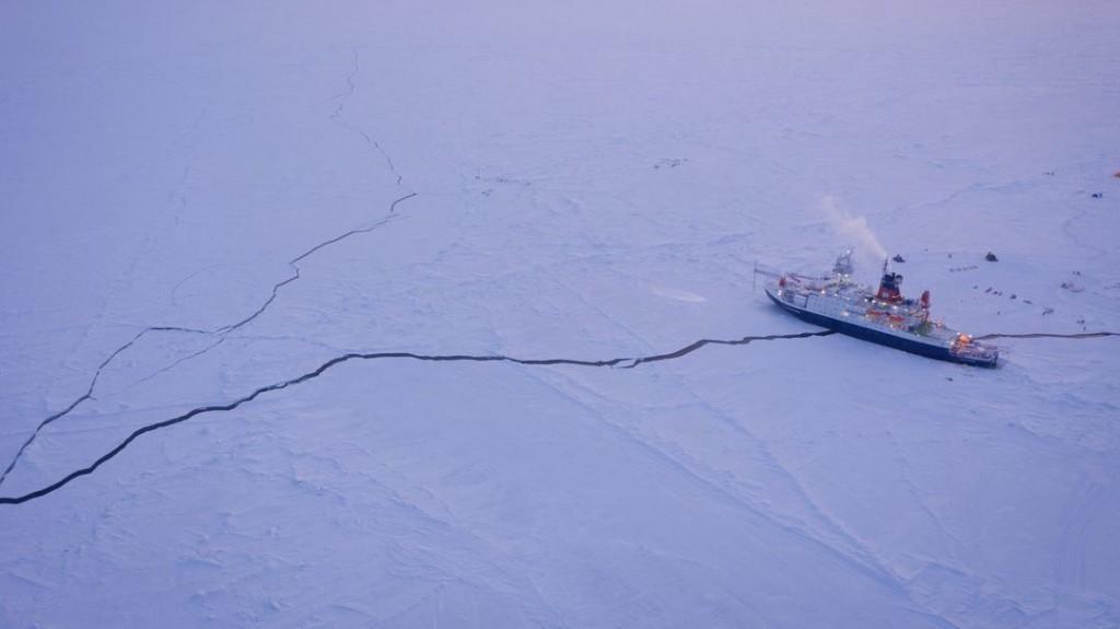 """""""Polarstern""""-Forscherin Arndt: """"Die Rückkehr war schon speziell diesmal"""""""