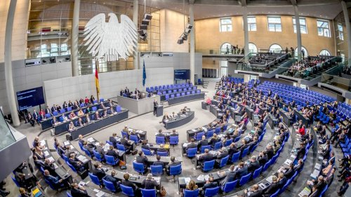 Die AfD als Zuschauer im Bundestag