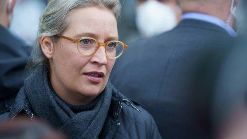 AfD-Chefin Weidel im Wahlkreis Bodensee weit abgeschlagen: Ergebnisse der Bundestagswahl 2021 in Grafiken