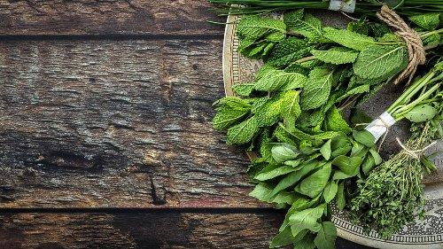 So züchten Sie Basilikum, Petersilie und Co. auf dem Balkon an