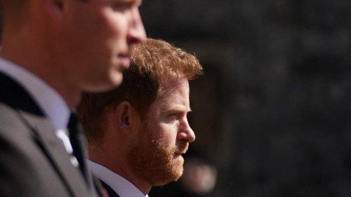 Friede wegen Prinzessin Diana? So treffen Harry und William in London aufeinander