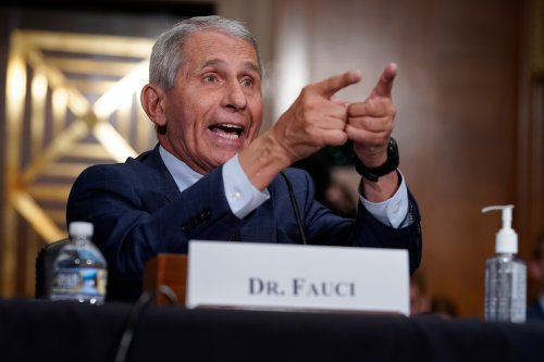 Experts weigh in on risky Wuhan study that Fauci, Paul debated - Roll Call