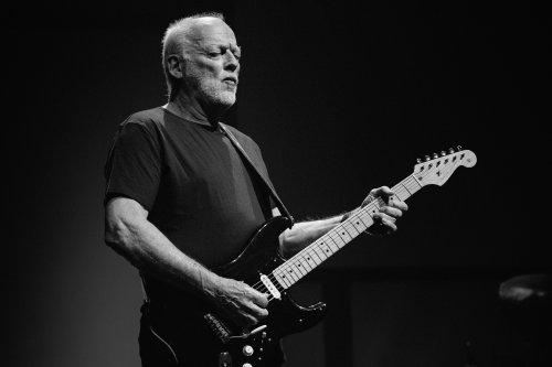 Watch David Gilmour Perform Fleetwood Mac's 'Albatross' at Peter Green Tribute Show