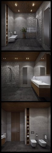 Contemporary Bathroom Designs Exposed Gray and White Color Decor Look So Luxurious