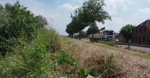 Forderung aus Birten: Deichverband soll Alternative zur Betonmauer an der B57 prüfen