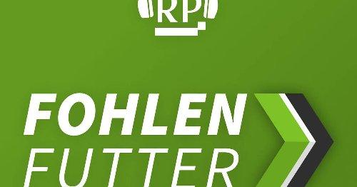 Fohlenfutter-Podcast: Warum Borussia Mönchengladbach gegen Stuttgart wild und torreich werden könnte