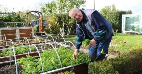 Anlage in Hückeswagen-Busenbach: Kleingärten sind jetzt winterfest
