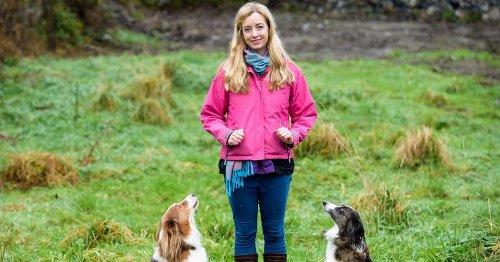 Ennis based dog trainer Deirdre Ryan's top tips for tackling pet obesity