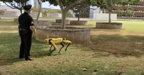In Hawaii, robot dogs join the police force
