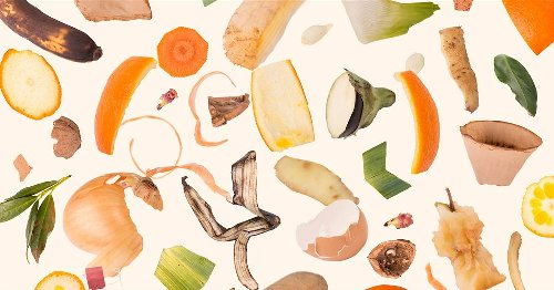 Tasty ways to use leftover food scraps and save money