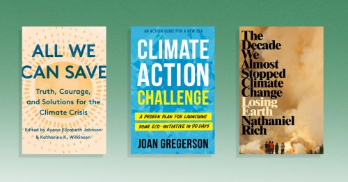 12 best books on climate change, shared by climate activists