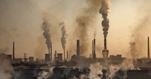 Carbon emissions in 2021 to pass pre-pandemic levels, report warns