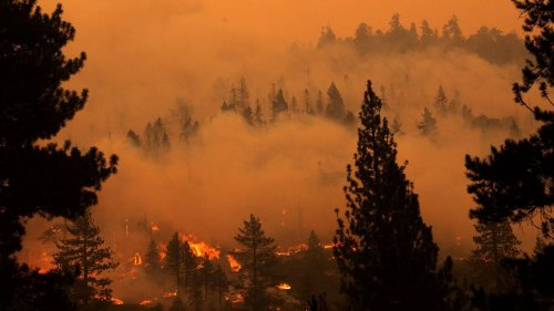 California halts insurance cancellations in major wildfire areas across 22 counties