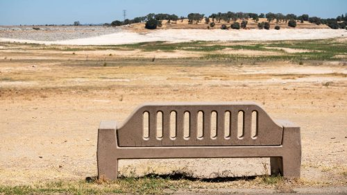 Roseville announces 20% mandatory water cut amid worsening drought. What you need to know