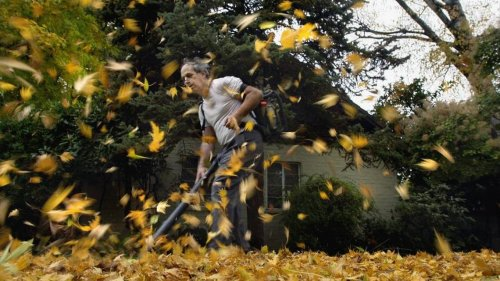California could ban sale of gas-powered leaf blowers under proposed clean air law