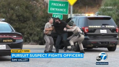 Driver brawls with police after chase on Southern California highway, video shows