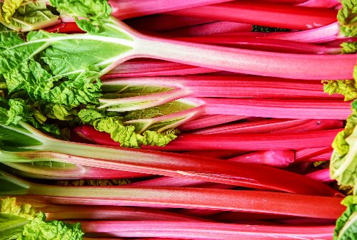 More than a pie filling — here's everything you need to know about cooking with rhubarb